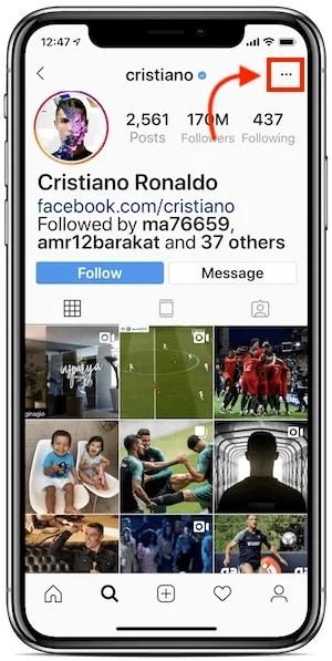 download instagram profile picture 01 - دانلود عکس پروفایل اینستاگرام با کیفیت اصلی