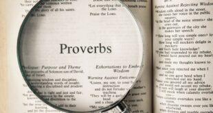 proverbs 310x165 - 99 تا از ضرب المثل های معروف جهان