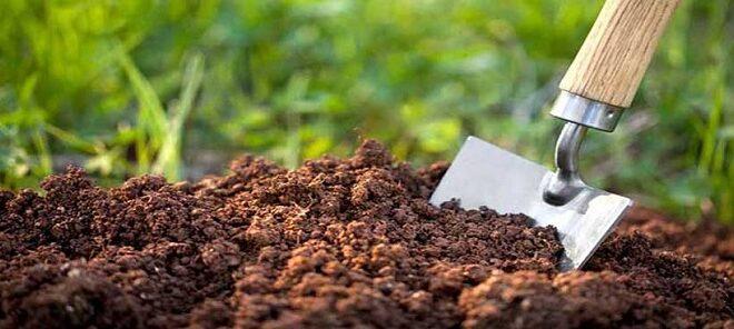 کدام خاک آب بیشتری جذب میکند 660x296 - نفوذ آب در کدام خاک بیشتر است